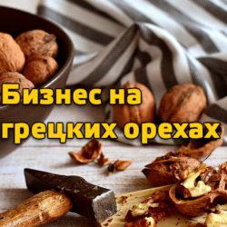 Бизнес на грецких орехах