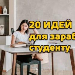 20 идей для заработка студенту
